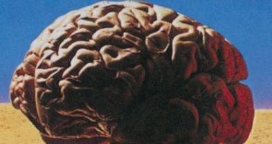Photo of HeadRUSH