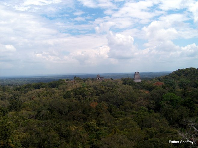 tikal national park el pet233n guatemala san diego reader