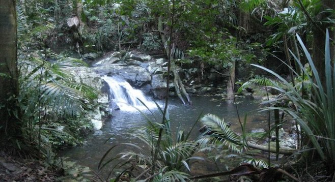 Stumble upon pools like this one in Oz's lush Atherton Tablelands.