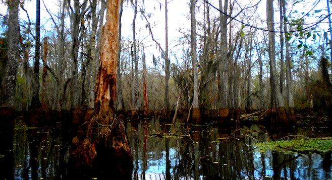 Cruising the bayou in outlying New Orleans – who knows what spirits are lurking...