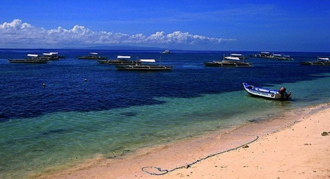 One of the many stunning beaches in Bohol.