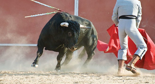 Spanish-style bullfighting is illegal in California. So animal rights activists want to shut down a bullfighting school headquartered in San Diego.