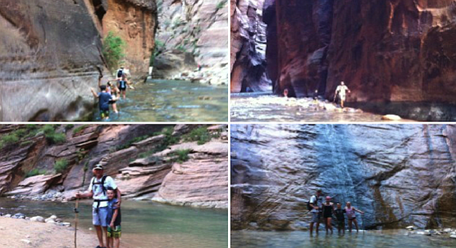 The Bottom-Up section of Zion's Narrows hike is 10 miles round-trip and fun for the whole family.