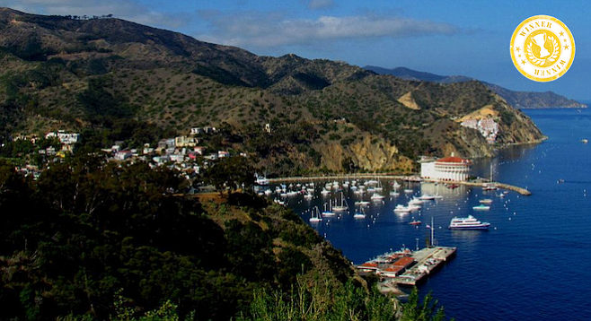 Avalon's harbor and Catalina Casino from the Inn at Mount Ada.