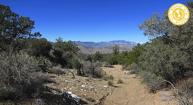 On the Cactus Spring Trail, with Mount San Jacinto in the background.