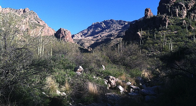 Hiking through Coronado National Forest's Ventana Canyon, about 20 minutes north of Tucson.