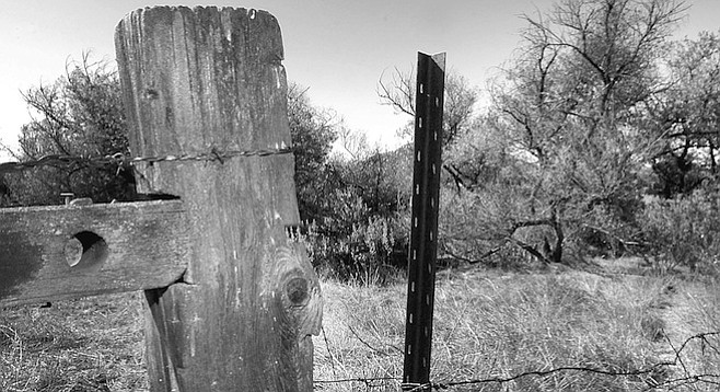 Outside the Cagney ranch, the rest of the grassland is broken into plots as large as 1100 and 1600 acres possessed by only four or five longtime owners.
