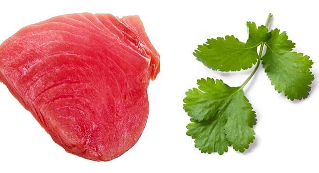 Tuna marries cilantro in this simple recipe