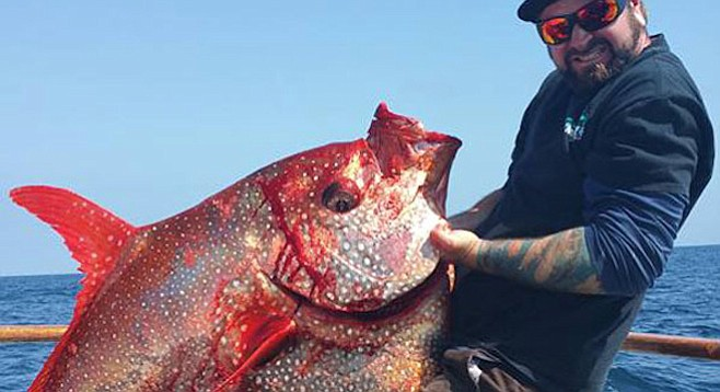 First Opah Landing Of The Year San Diego Reader