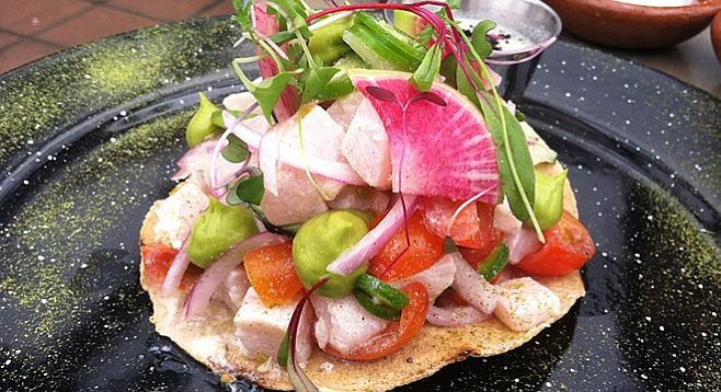 The ceviche tostada: tasty, beautiful, and almost $20.