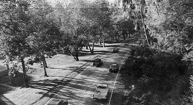 The Cabrillo Freeway (163) that runs through Balboa Park was one of the first of two landscaped freeways in the state (the other was the Pasadena Freeway).