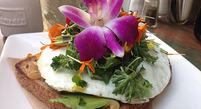 Edible flowers over fried egg and avocado on toast
