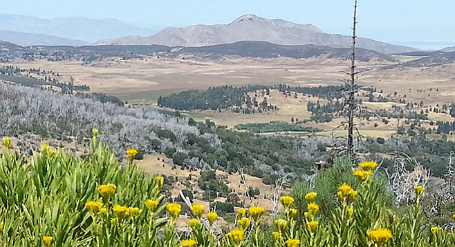 View of Cuyamaca Lake from Conejos Trail