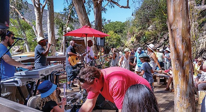 Locals and tourists cut loose to a cover band at the Sawdust Art Festival.