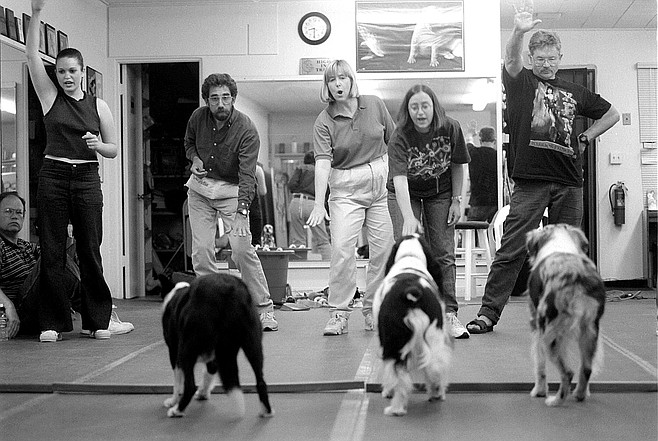 Dog-training class