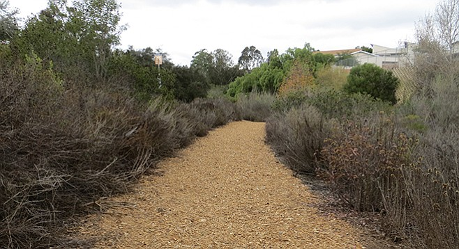 Beginning of the trail to 32nd Street Canyon Open Space