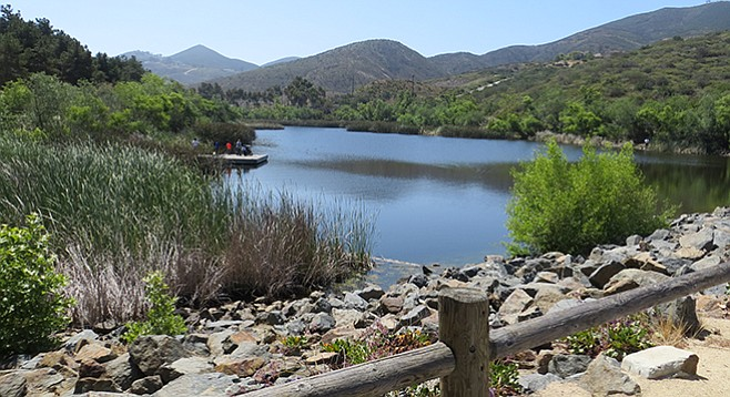 Discovery Lake is an easy hike in an ecosystem full of critters — watch out for snakes and poison oak.