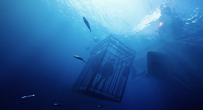 47 Meters Down: It's hard to see how this ends well. But then, it always is.