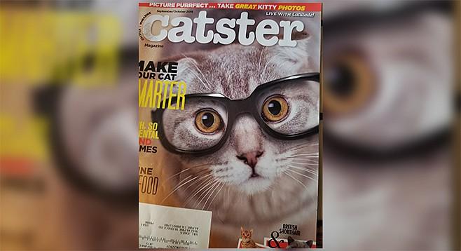 Catster cover model