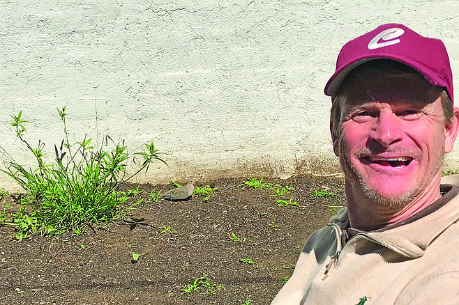 Steve (with mourning dove friend) explains how only Milkweed can save the Monarchs