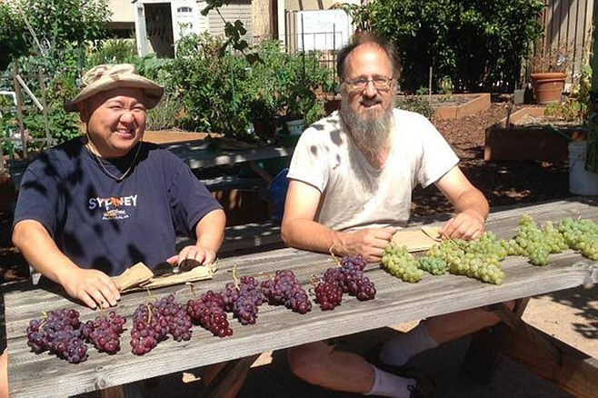 Hipsters love a good table-grape pun.