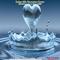 Water for Children Music Fest & Eco Fair