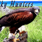 Sky Hunters Birds of Prey