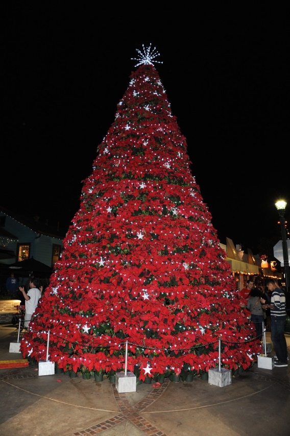 Little Italy Tree Lighting Amp Christmas Village Saturday