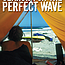 Search for the Perfect Wave