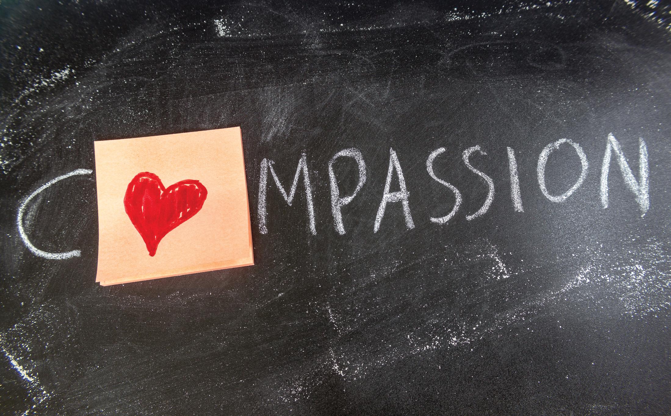Compassion essays