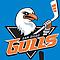 San Diego Gulls Hockey