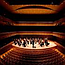 UC San Diego Chamber Orchestra