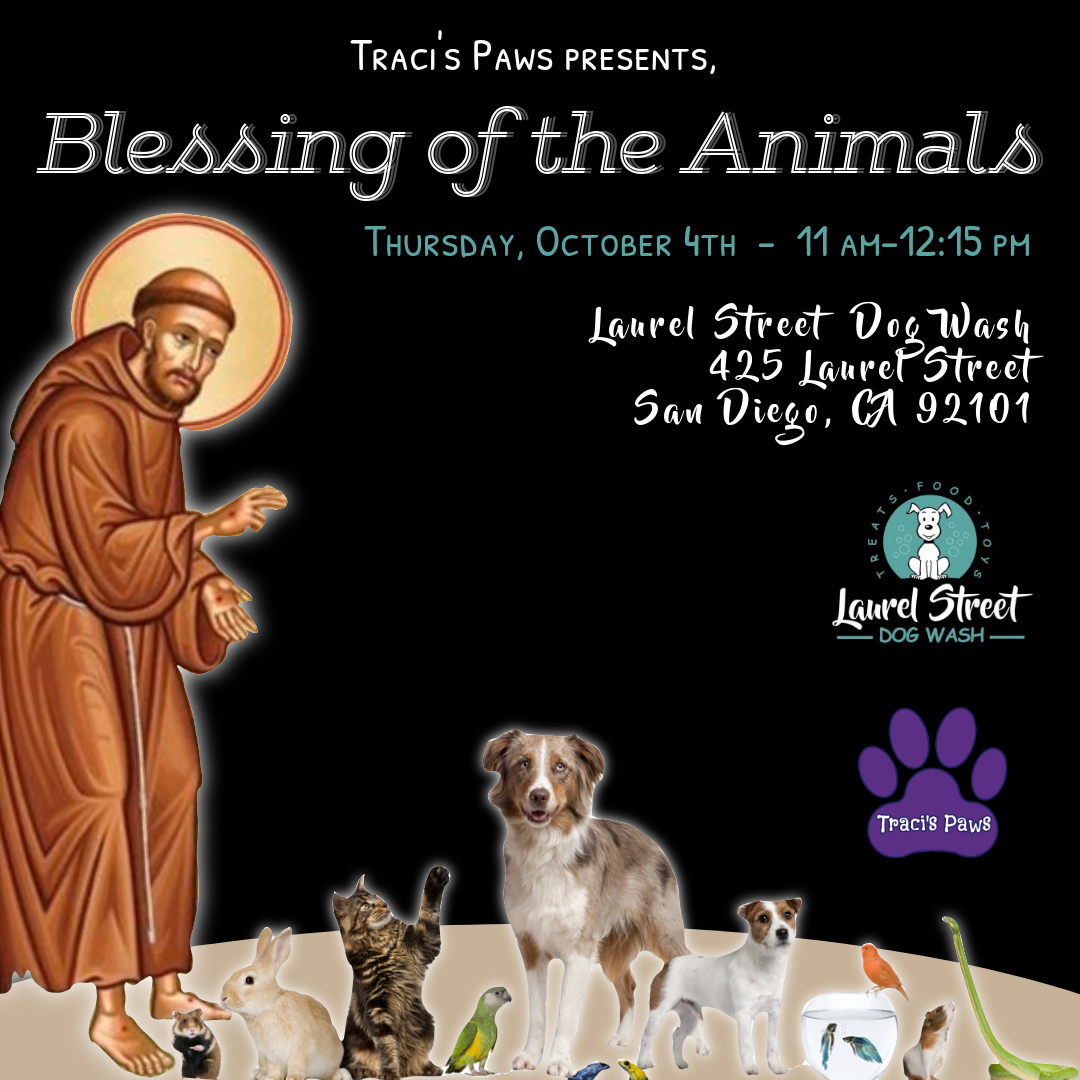 Traci's Paws Blessing of the Animals - Thursday, October 4