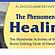 The Healing Phenomenon