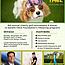8th Invitational Dog-Friendly Golf Tournament