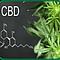Comprehensive Cannabis Education