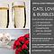 Cats, Love & Bubbles