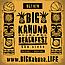 Big Kahuna Beachfest