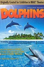 Dolphins (Giant Screen Format)