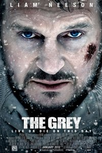 Grey movie poster
