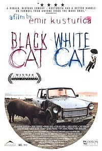 Black Cat, White Cat movie poster