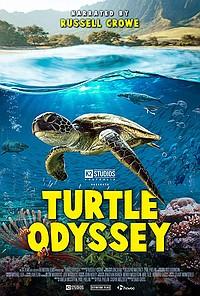 Turtle Odyssey movie poster