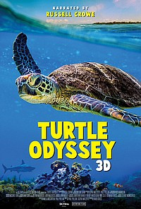 Turtle Odyssey: The IMAX 2D Experience movie poster