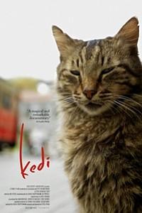 Kedi movie poster