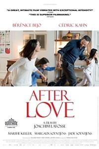 After Love (L'Economie du couple) movie poster