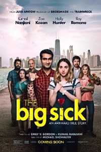 Big Sick movie poster