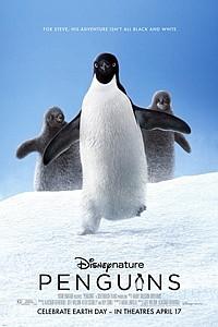 Penguins movie poster