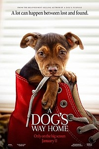Dog's Way Home movie poster