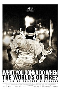 What You Gonna Do When the World's on Fire? movie poster