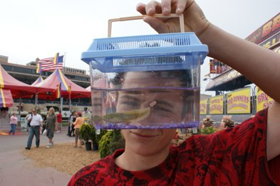 Picking up a pet at the San Diego County Fair.